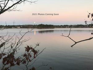 2021 Photo Gallery Coming Soon | Cape Cod Upholstery Shop | Located in South Dennis, MA 02660